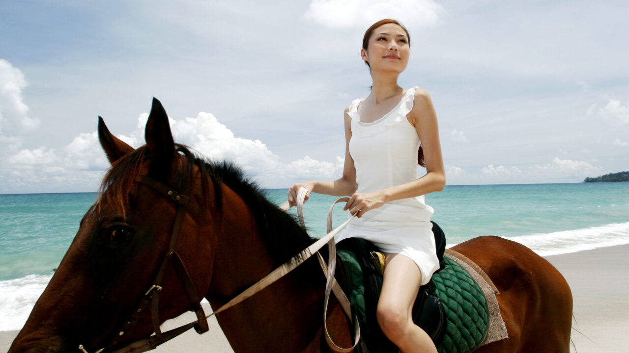 65 Quotes to Inspire Horse Riders and Riding Horses