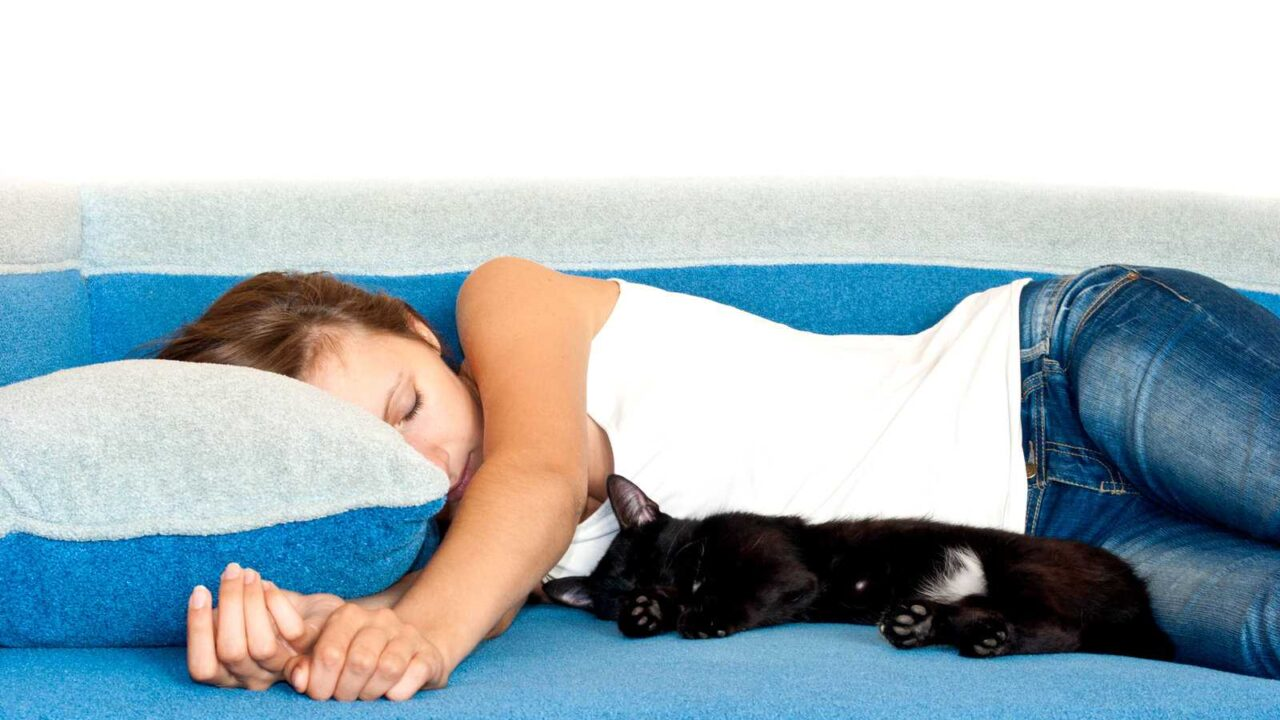 Why Do Cats Sleep Between Your Legs? [Is it Safe?]