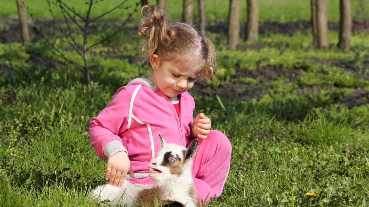 The 5 Best Pets For Children With Special Needs [AND WHY]